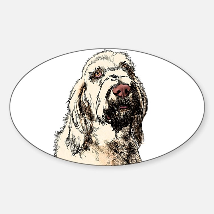 Spinone Decal