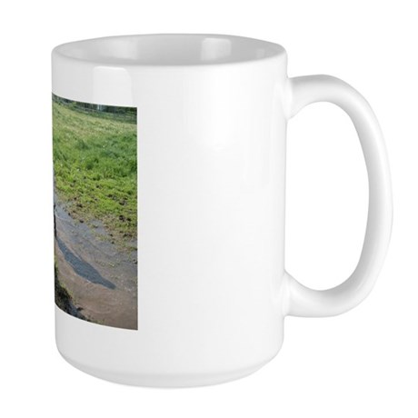 Boy splashing Large Mug