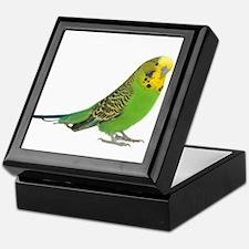 Green Parakeet Keepsake Box