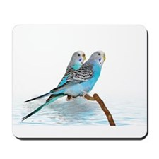 Parakeet Friends Mousepad