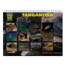 Tanganyika Cichlids Congo 2015 Wall Calendar