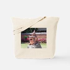 Ryukyu Shisa Tote Bag