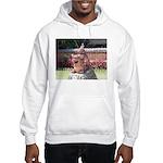 Ryukyu Shisa Hooded Sweatshirt