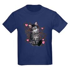 Cute Blue-eyed Tabby Cat T