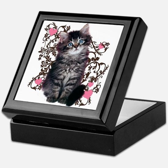Cute Blue-eyed Tabby Cat Keepsake Box