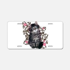 Cute Blue-eyed Tabby Cat Aluminum License Plate