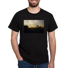 Radiant Morning Black T-Shirt