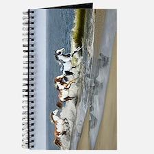 Painted Ocean Journal