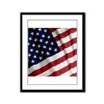 America Framed Panel Print