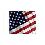 America 38.5 x 24.5 Wall Peel
