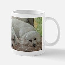 Coton De Tulear Patience Mug