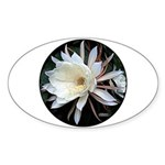 Epiphyte Cactus Flower Sticker (Oval 50 pk)