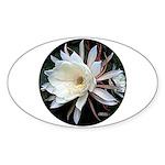 Epiphyte Cactus Flower Sticker (Oval 10 pk)
