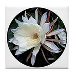 Epiphyte Cactus Flower Tile Coaster