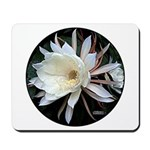 Epiphyte Cactus Flower Mousepad
