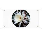 Epiphyte Cactus Flower Banner