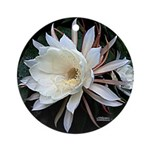 Epiphyte Cactus Flower Ornament (Round)