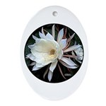 Epiphyte Cactus Flower Ornament (Oval)