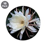 """Epiphyte Cactus Flower 3.5"""" Button (10 pack)"""
