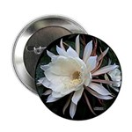 """Epiphyte Cactus Flower 2.25"""" Button (10 pack)"""