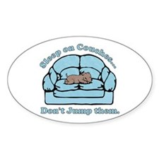 Don't Jump Couches Oval Decal