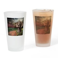 """""""Why God Made Dogs"""" GSP Drinking Glass"""