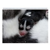 Siberian husky Wall Calendars