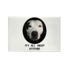 IT'S ALL ABOUT ATTITUDE Rectangle Magnet