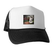 """""""Why God Made Dogs"""" Bull Terrier Trucker Hat"""