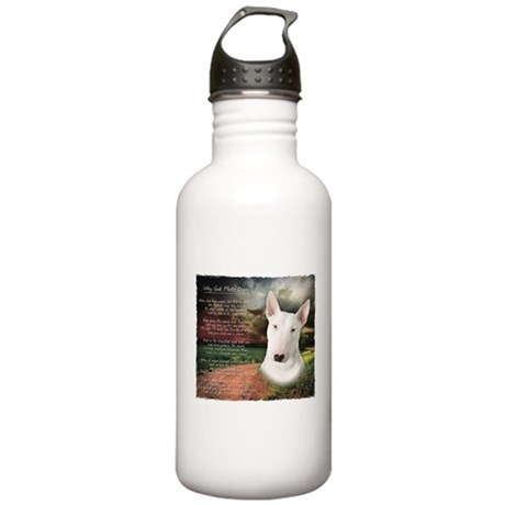 """""""Why God Made Dogs"""" Bull Terrier Stainless Water B"""
