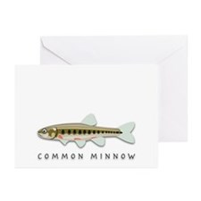 Common Minnow Greeting Cards (Pk of 10)