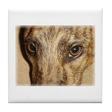 Beautiful eyes greyhound Tile Coaster
