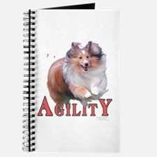 Sheltie Agility Journal