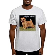 Champion Norfolk Ash Grey T-Shirt