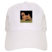 Champion Norfolk Baseball Cap