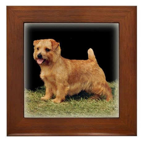 Champion Norfolk Framed Tile