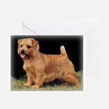 Champion Norfolk Greeting Cards (Pk of 10)