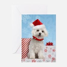 Maltese Puppy Christmas Greeting Cards (Pk of 20)
