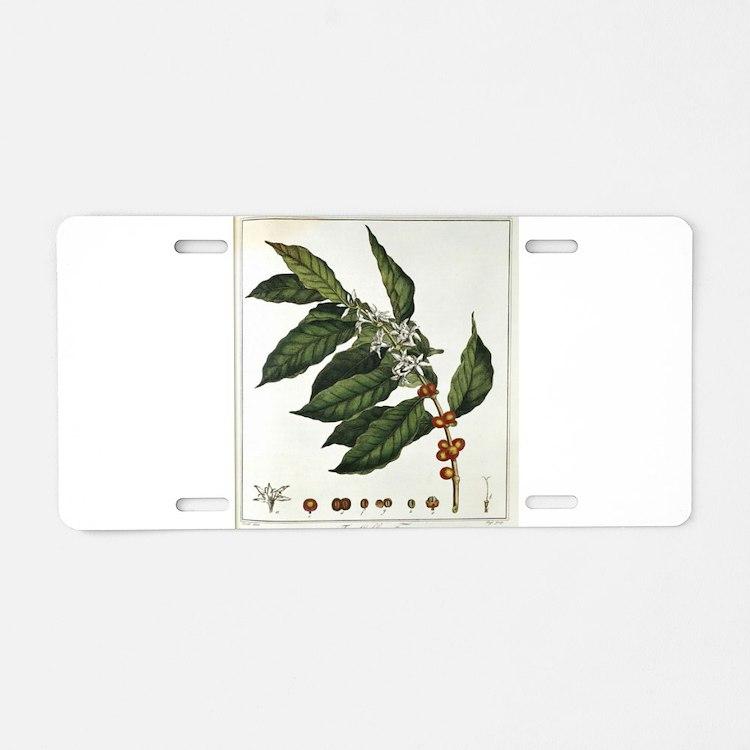 Coffee Botanical Print Aluminum License Plate