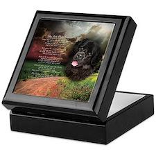 """Why God Made Dogs"" Newfoundland Keepsake Box"
