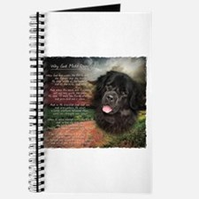 """Why God Made Dogs"" Newfoundland Journal"