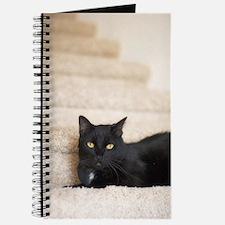 ''Black Cat'' Journal