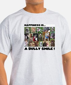 Bully Smiles! Ash Grey T-Shirt