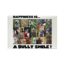 Bully Smiles! Rectangle Magnet (10 pack)