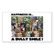 Bully Smiles! Rectangle Decal