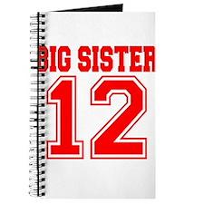 Big Sister 2012 Journal