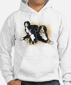 Bernese Mountain Dog Trio Jumper Hoody
