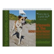 Tripawds In The Now! Wall Calendar #1