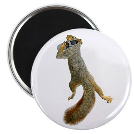 Squirrel Cell Phone Magnet