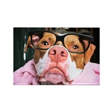 Pit Bull in glasses Rectangle Magnet